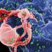 hiv_virus_prevenzione_aids_busnago_soccorso
